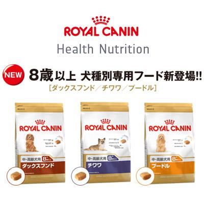 royalcanin1309_ec