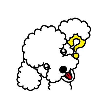 poodle_question