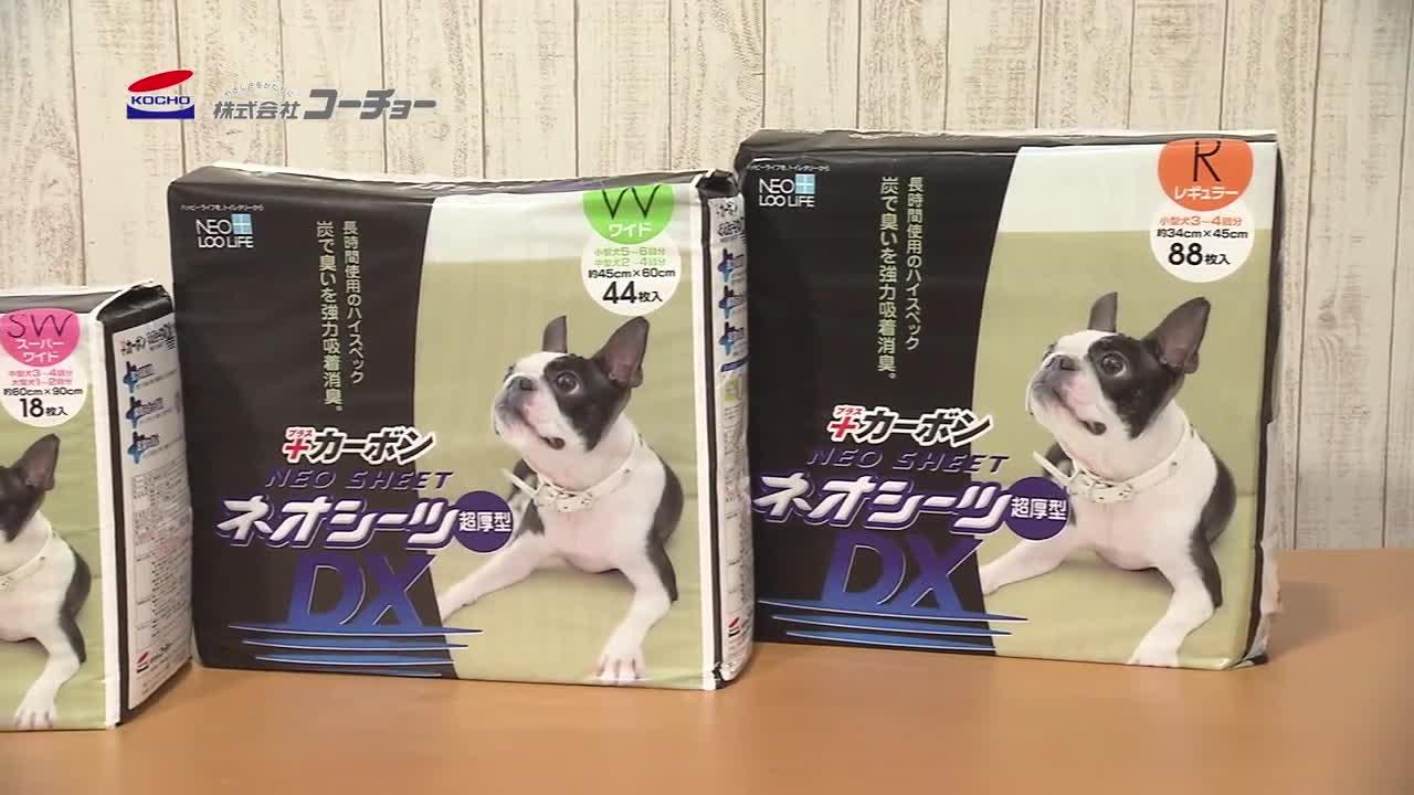 ネオシーツカーボンDX 超厚型 レギュラー(34cm×45cm) 88枚×4動画1