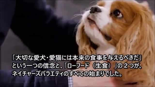 ネイチャーズバラエティ インスティンクト ロウブースト ドッグ ダック 1.8kg動画1